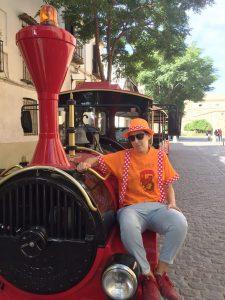 Tren Turístico_Feria de San Miguel